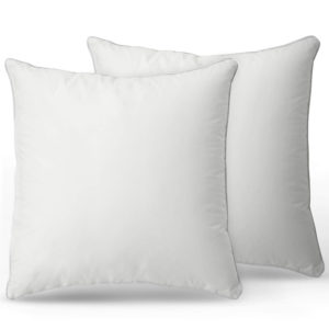 Set of Two Square Throw Pillows